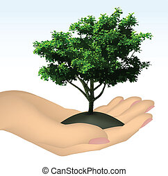 árbol., vector, mano humana