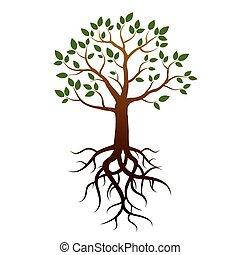 árbol, vector, verde, raíces, leafs