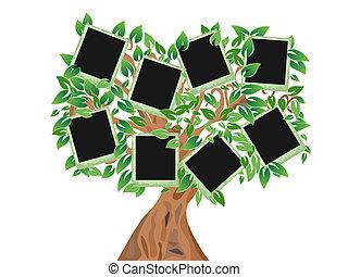 árbol verde, con, marcos, para, su, fotos