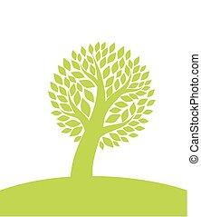 árbol verde, en, colina