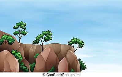 árboles, acantilado