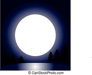 árboles, con, luna, por la noche
