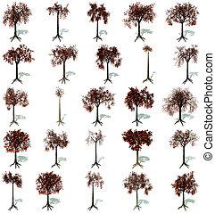 árboles de otoño, conjunto