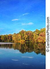 árboles de otoño, reflejar, en, lago
