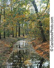 árboles de otoño, reflejar, en, río