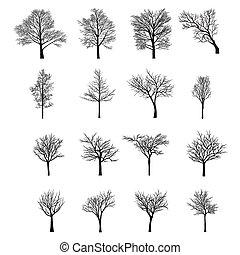 árboles, muerto, rama