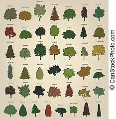 árboles., vector, conjunto, retro