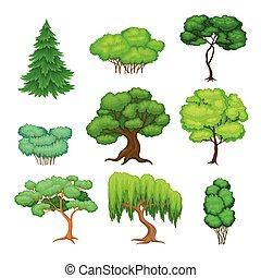 árboles, verde, tronco, conjunto, vector, follaje, ...