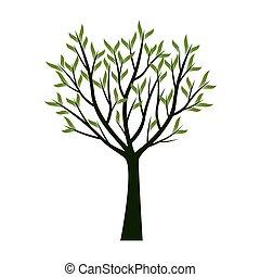 árboles verdes, con, leafs., vector, illustration.