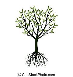 árboles verdes, con, roots., vector, illustration.