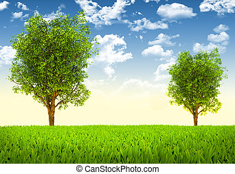 árboles verdes, paisaje