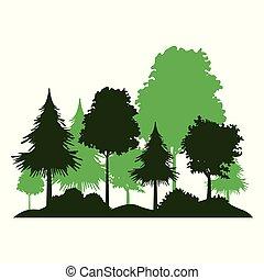 árboles, y, arbustos