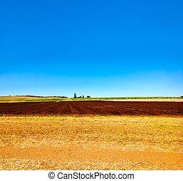 área, granja, campo, Arar, cultivado, Agricultura