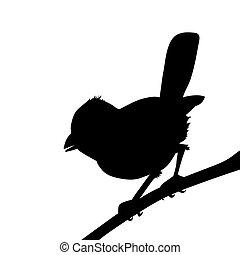 árnykép, ábra, háttér, vektor, white madár