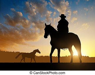 árnykép, cowboy, noha, ló