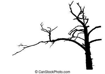 árnykép, fa, ábra, háttér, vektor, fehér