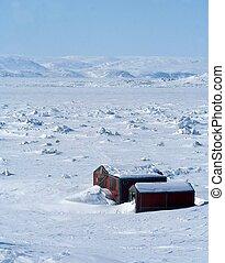 ártico, canadiense