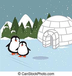 ártico, desenho