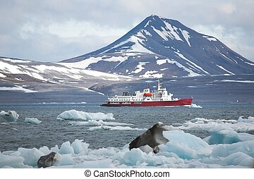 ártico, fiordo, barco, rojo