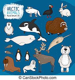ártico, hand-drawn, animales, conjunto