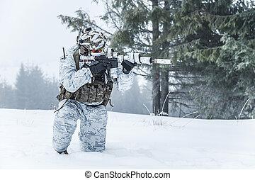 ártico, invierno, guerra