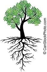 árvore, ícone, com, verde sai, e, raizes