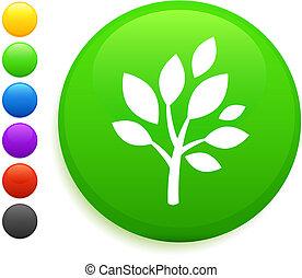 árvore, ícone, ligado, redondo, internet, botão