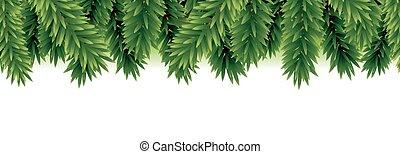 árvore abeto, borda