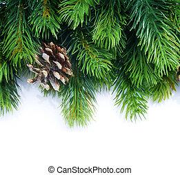 árvore abeto, borda, natal