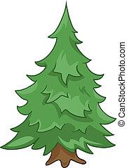 árvore abeto, caricatura, natureza