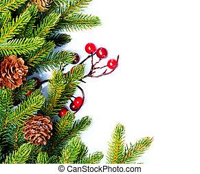 árvore abeto, isolado, desenho, natal., branca, borda