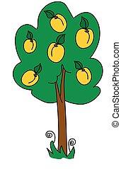 árvore abricó