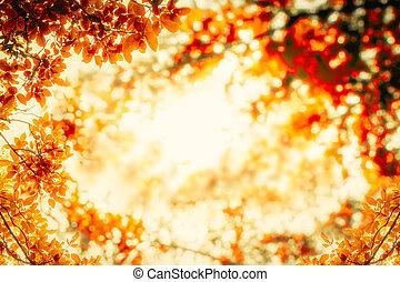 árvore, abstratos, natural, fundos, vista, de, verão, ou, primavera, season.