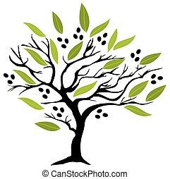 árvore, azeitona