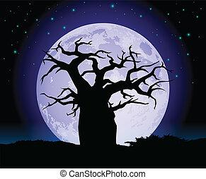 árvore baobab, silueta