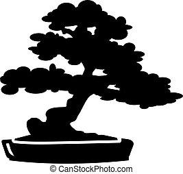 árvore bonsai, silueta