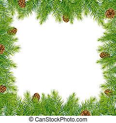 árvore, borda, cone, pinho, natal