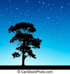 árvore, céu, noturna