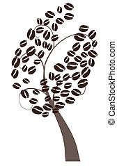árvore café
