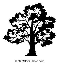 árvore carvalho, pictograma, pretas, silueta, e, contornos