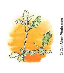 árvore, carvalho, ramo, contra, sol
