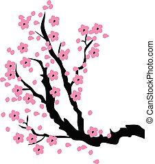 árvore cereja, ramo