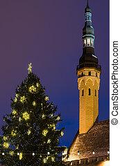 árvore cidade, corredor, tallinn, torre, natal