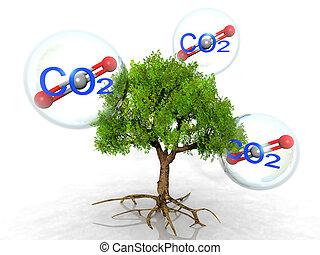 árvore, com, raizes, e, co2, bolhas, cercar, aquilo