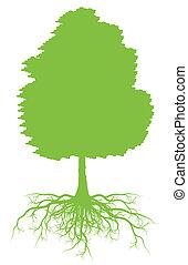 árvore, com, raizes, fundo, ecologia, vetorial, conceito