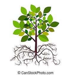 árvore, com, raizes, vetorial