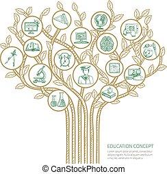 árvore, conceito, educação