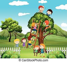 árvore, crianças, parque, cima, escalando