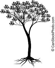 árvore, desenho, silueta, seu