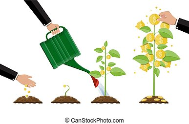 árvore., dinheiro, fases, crescendo, growing.